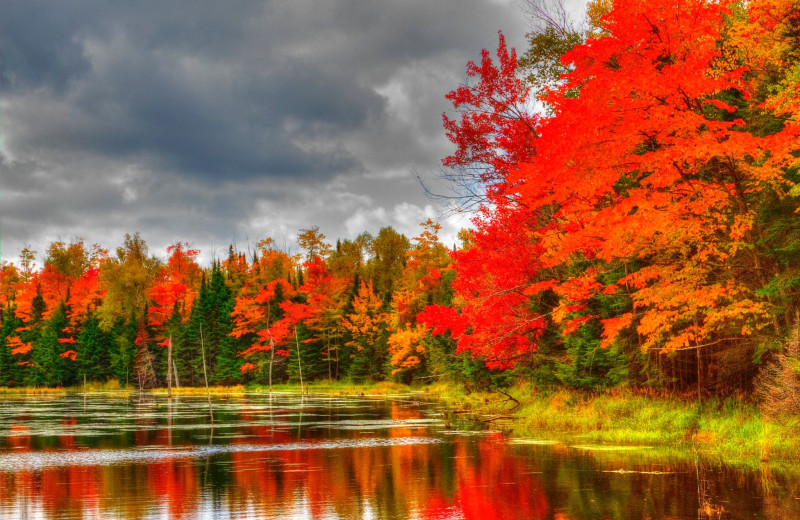 Fall at Whitetail Lodge.