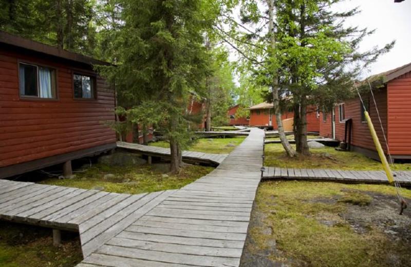 Cabins at Uchi Lake Lodge.