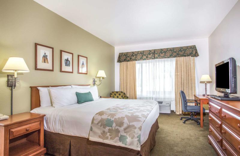 Guest room at Hawthorn Suites LTD. - Tempe.