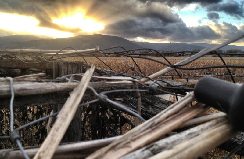 Scenic view at Teton Valley Lodge.