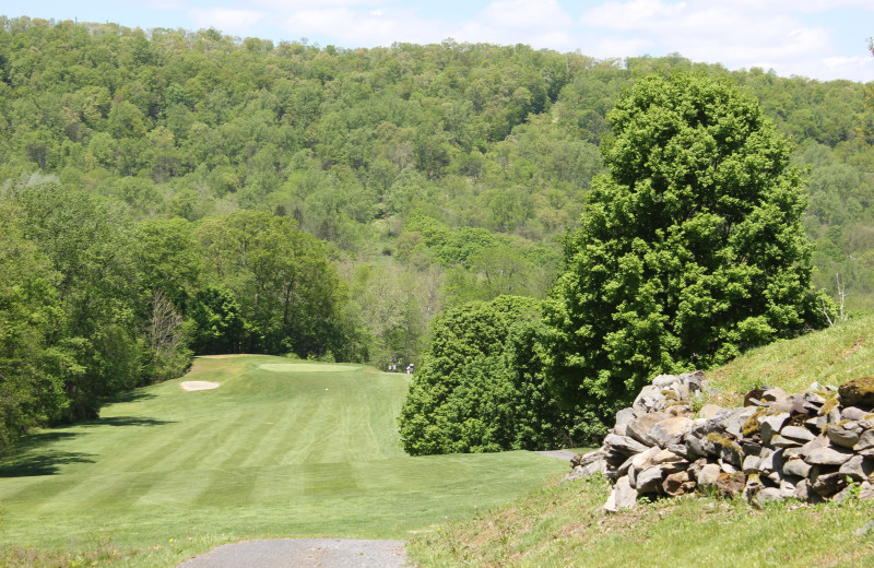 Golf course at Water Gap Country Club.