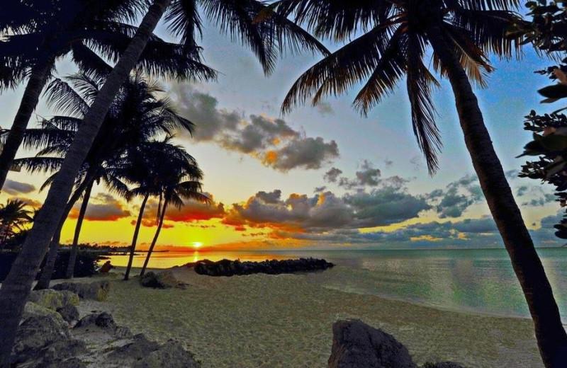 Beach at Mermaid & Alligator Key West.