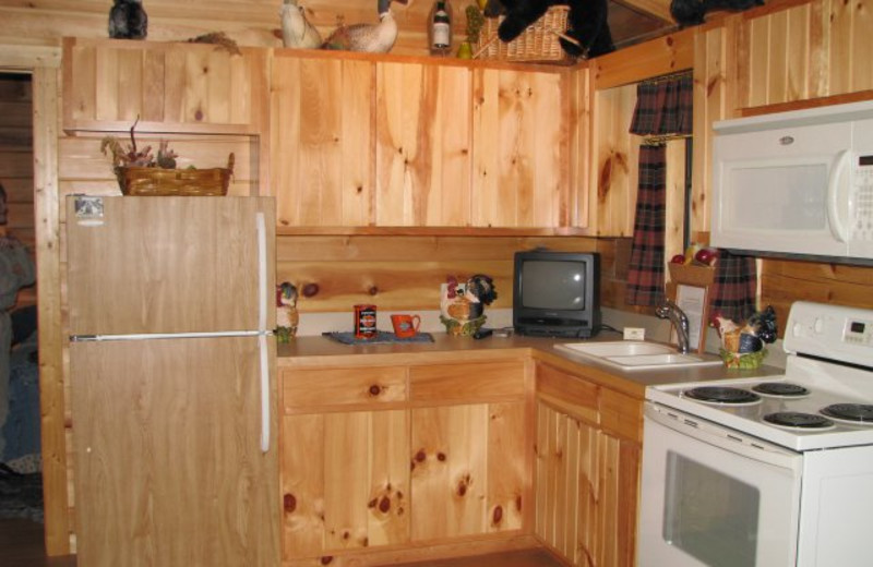 Cabin kitchen at Copperhead Lodge.