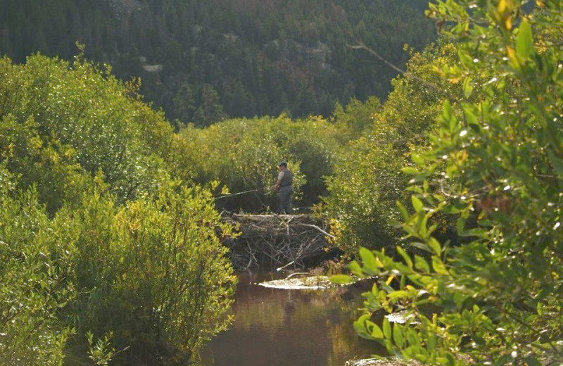 Fishing at Alpine Trail Ridge Inn.