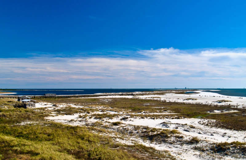 Beach view at Dauphin Island Beach Rentals, LLC.