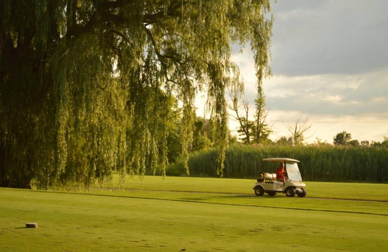 Golf course at Sawmill Creek Resort.