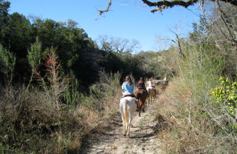 Horseback riding at West 1077 Guest Ranch.