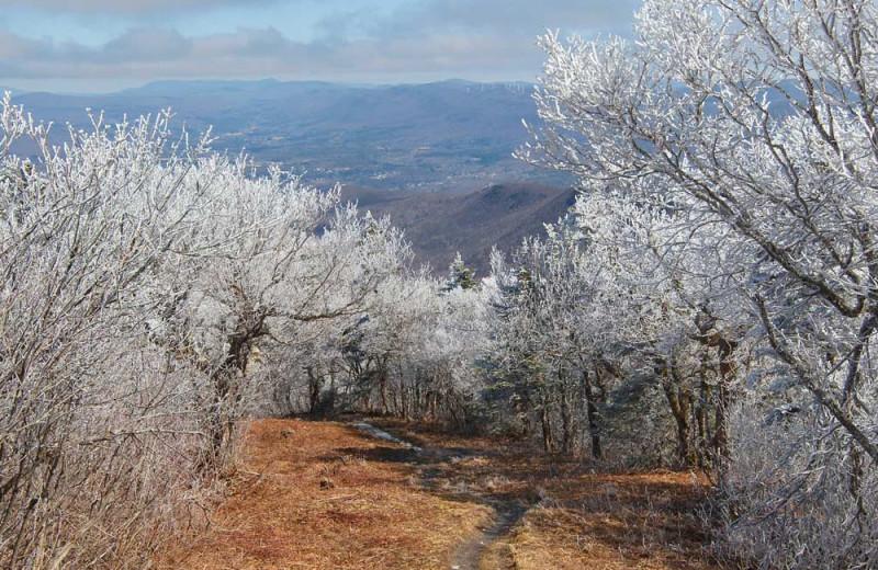 Mountains at Birchwood Inn.