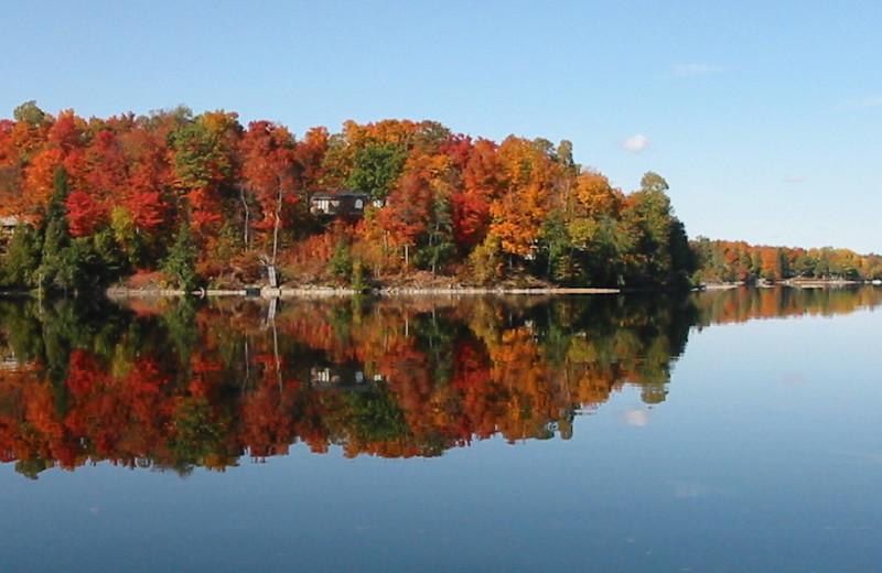 Fall colors at Sandy Beach at Otter Lake.