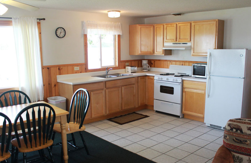Cabin kitchen at Auger's Pine View Resort.
