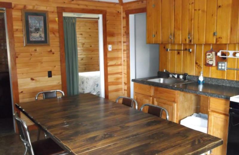 Cabin kitchen at Clementson Resort.