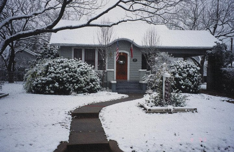Winter time at Camp David Bed & Breakfast.
