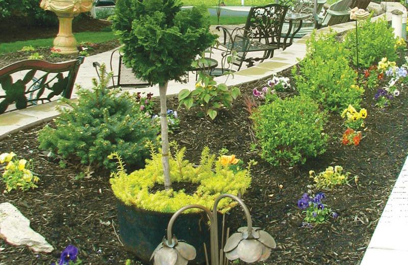 Garden at Country Living Inn.