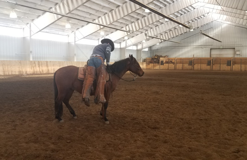 Indoor arena at Vista Verde Ranch.