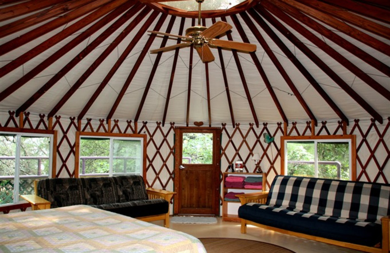 Yurt at Rainbow Hearth Sanctuary & Retreat Center.