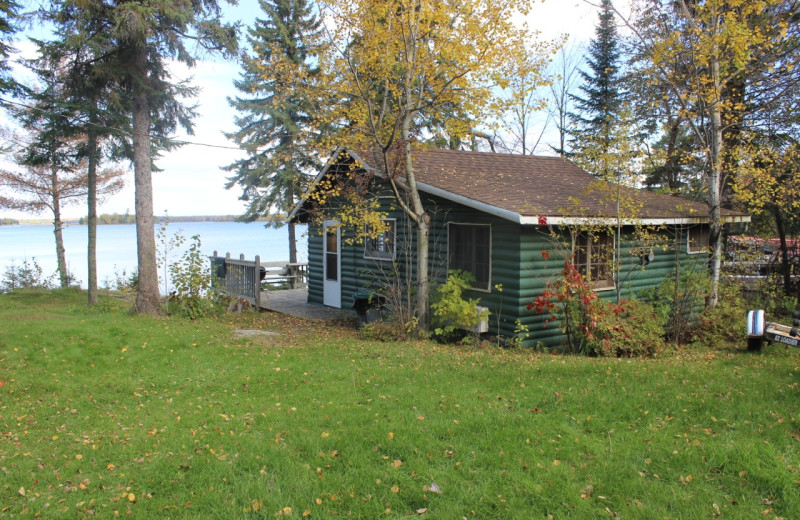 Lakeview Cabin • waterfront view