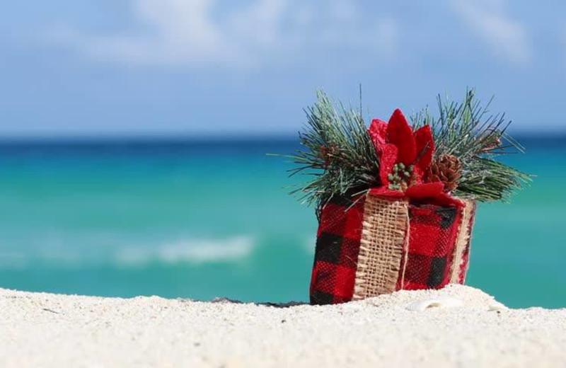 Bald Head Island Vacations