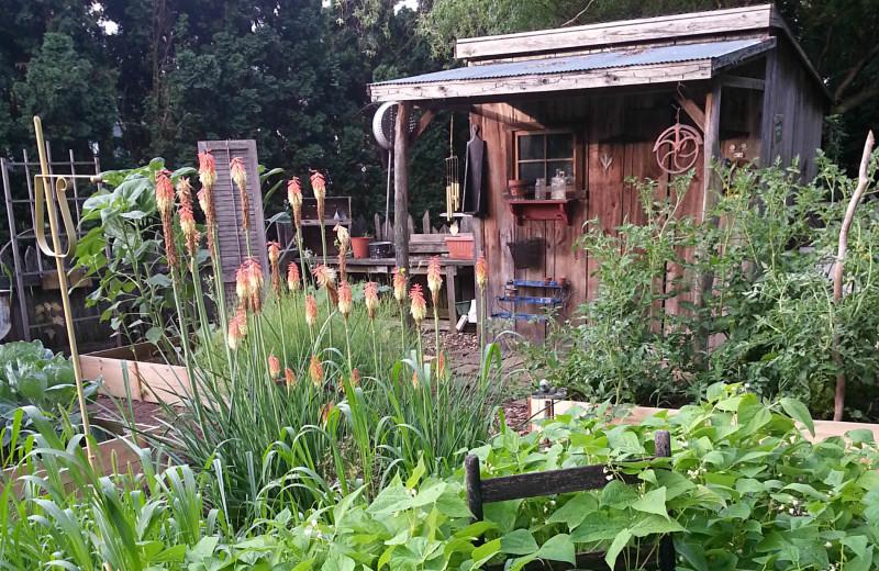 Garden at 1825 Inn Bed & Breakfast