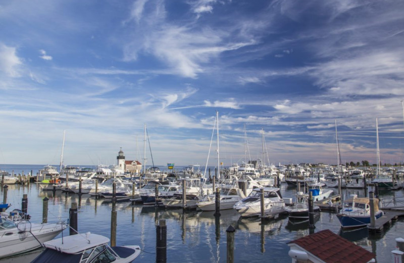 Marina at Saybrook Point Inn & Spa.