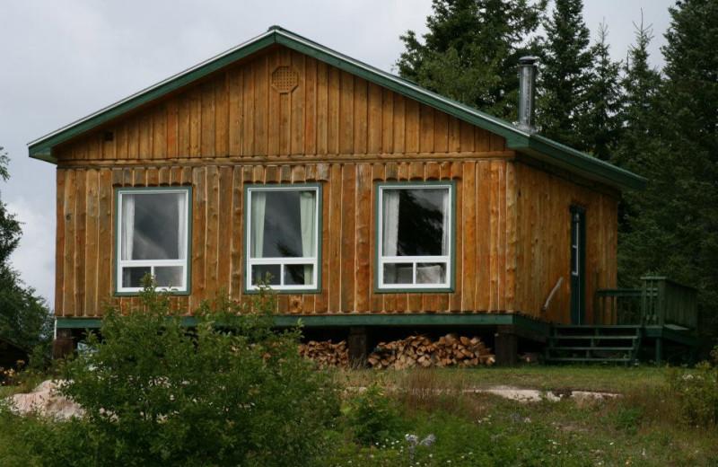 Cabin at Tatnall Camp