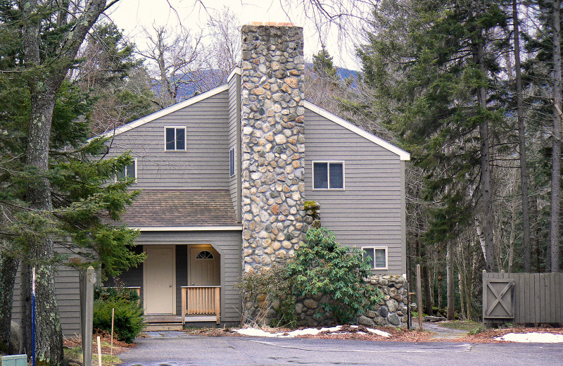 Exterior view of Snowy Owl Inn and Resort.
