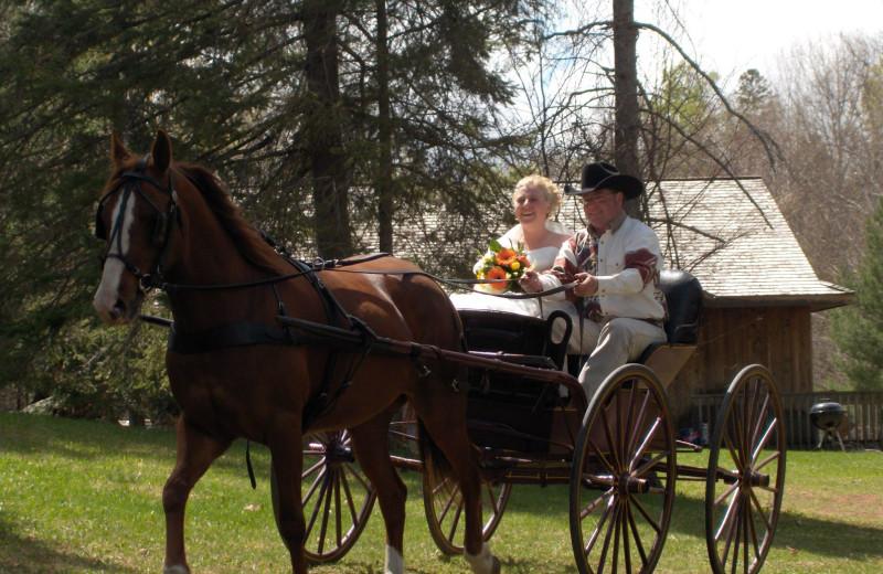 Horse carriage at Northridge Inn & Resort.