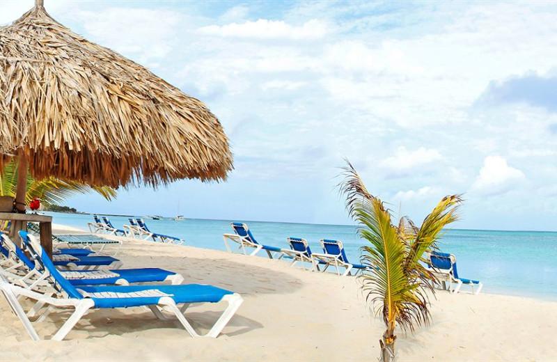 The beach at Brickell Bay Beach Club Aruba.