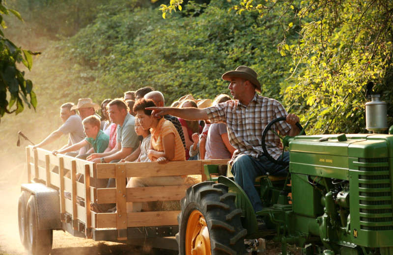 Hay ride at Marble Mountain Guest Ranch.