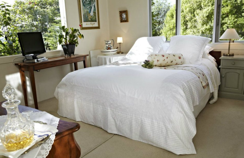 Guest room at Bed of Roses.