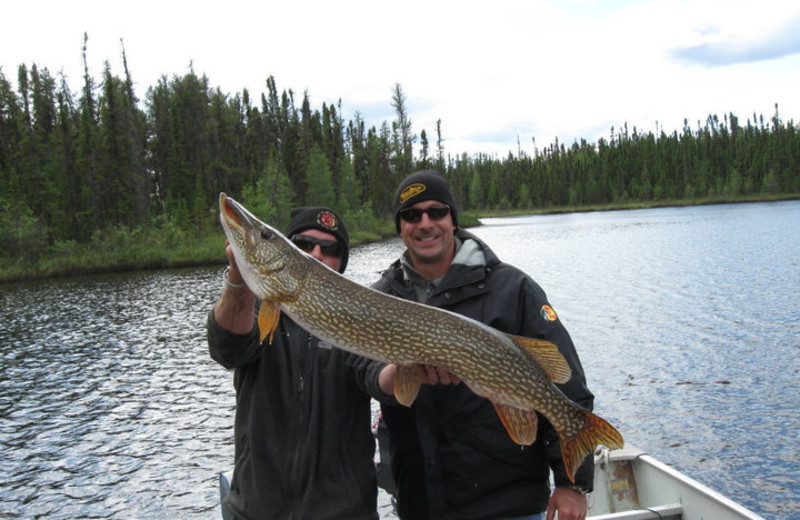 Fishing at Great White North Wilderness Lodges.