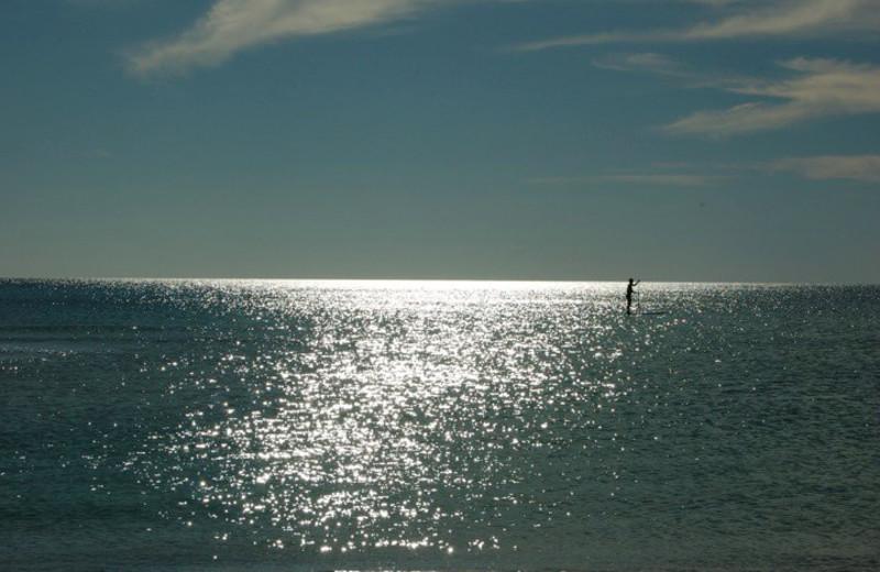 Paddleboarding near Days Inn Panama City Beach