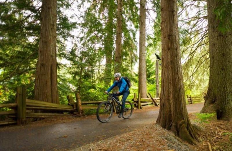 Biking near Whistler Premier Resort.