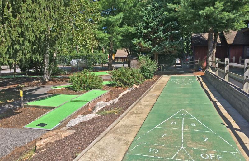 Mini golf and shuffle board at Yogi Bear's Jellystone Park Gardiner.