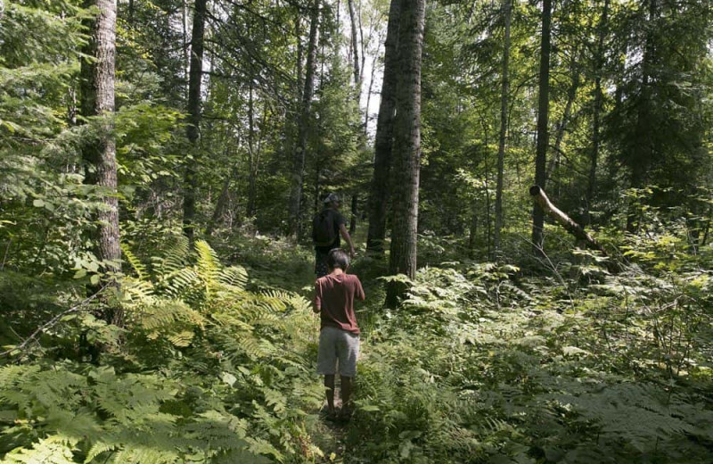 Hiking at Voyageur Park Lodge.