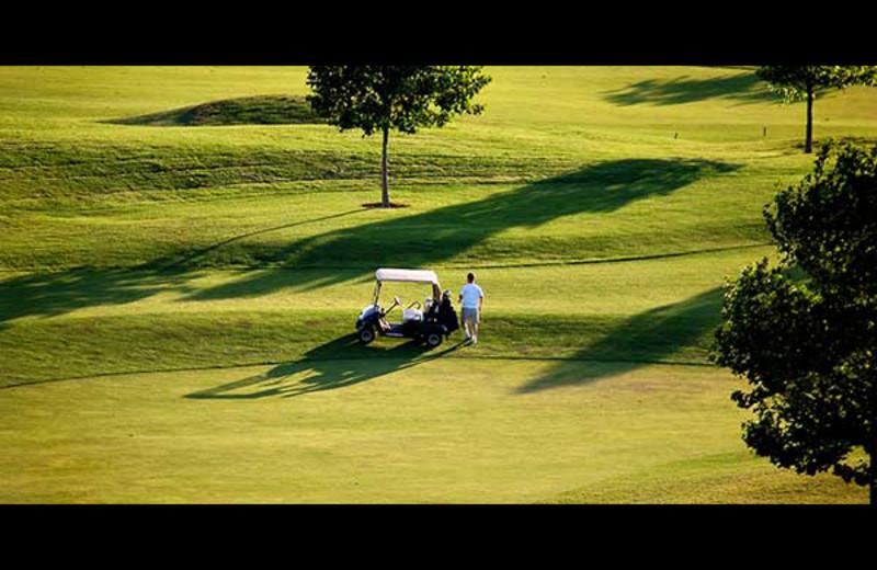 Golf near Rocky Mountain Elk Ranch.
