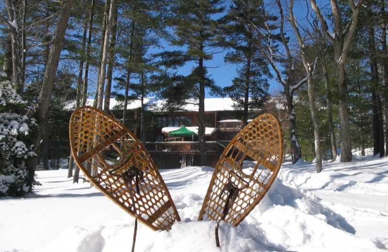 Snowshoeing at Westwind Inn on the Lake.