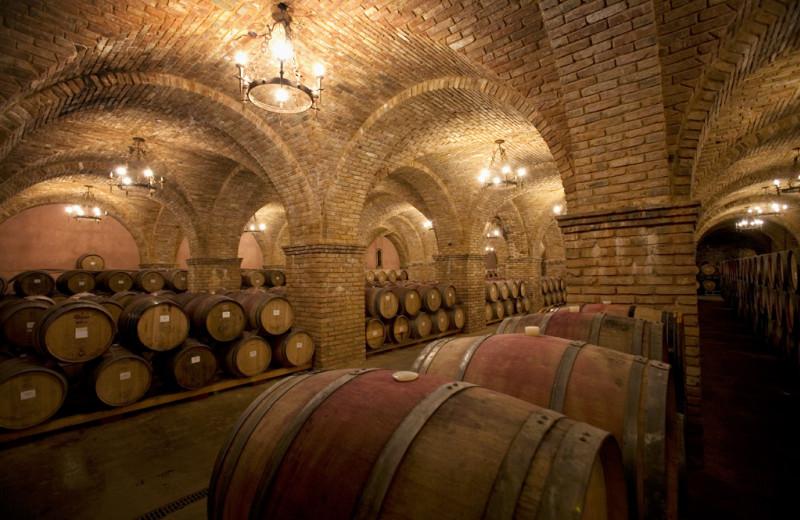 Winery tours near EuroSpa & Inn.