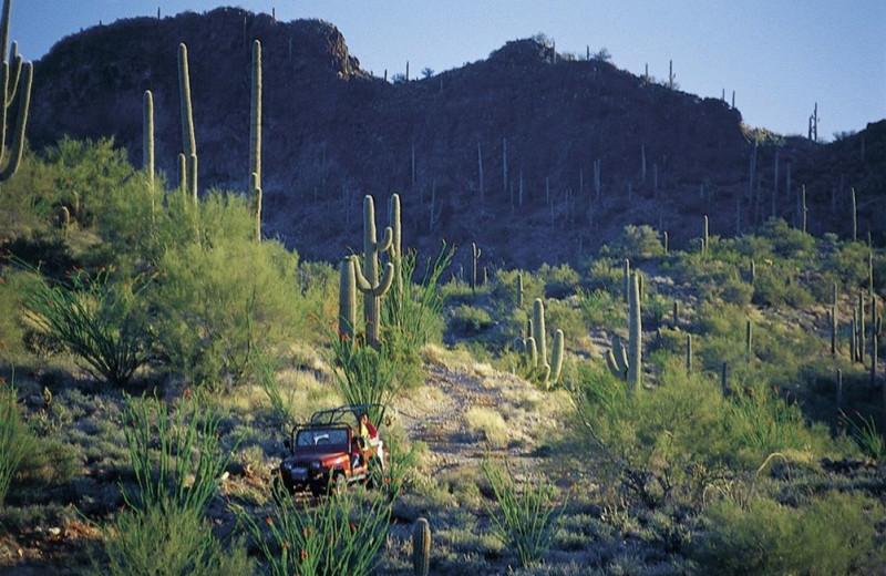Scenic view of Rancho De Los Caballeros.