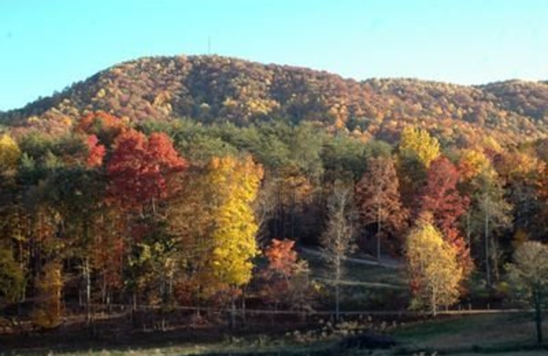 Mountain View at JP Ridgeland Cabin Rentals
