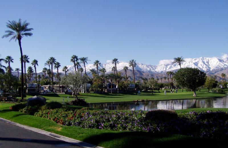 RV resort at Outdoor Resort Palm.