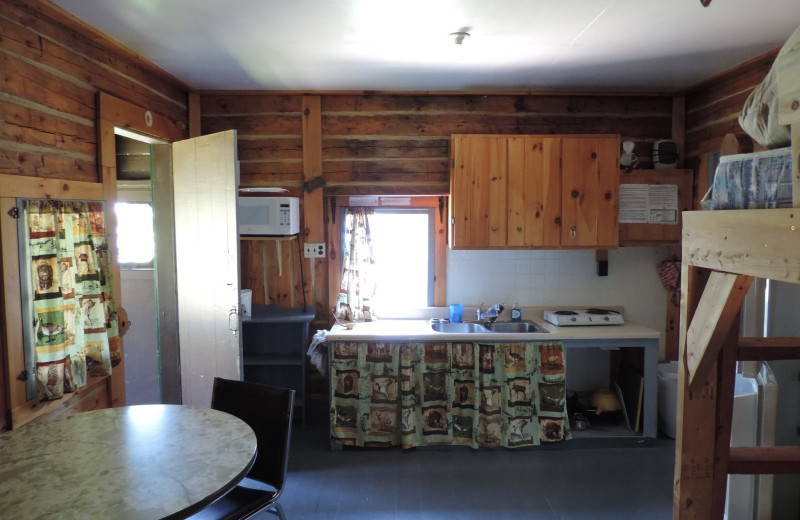 Cabin kitchen at Owls Nest Lodge.