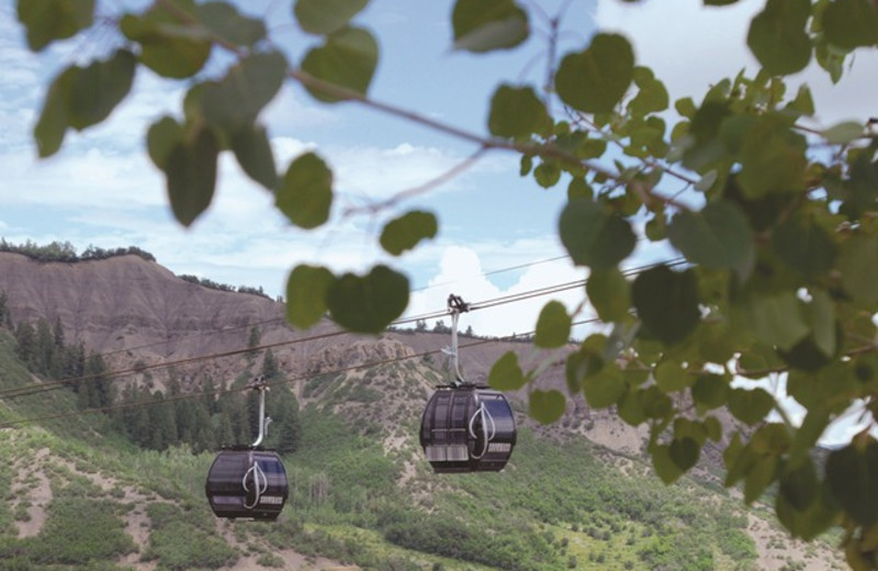Gondola in the summer at The Crestwood.