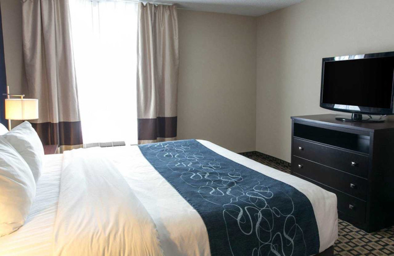 Guest room at Comfort Suites Benton Harbor.