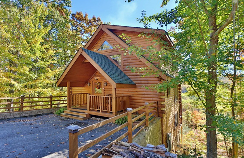 Wild Willow cabin at Little Valley Mountain Resort