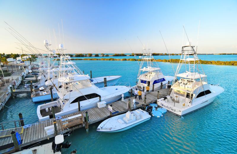 Marina at Hawks Cay Resort.