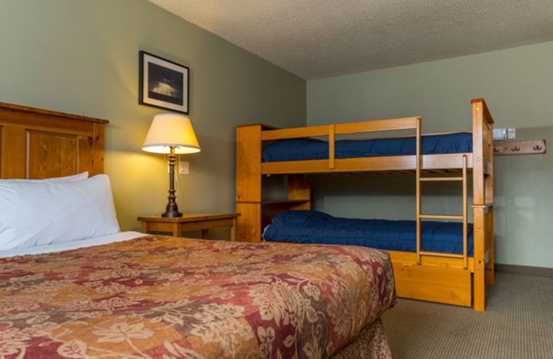 Guest room with bunk beds at Red Tree Lodge.