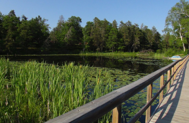 The dock at Boyd Lodge.