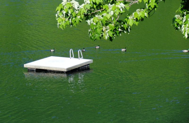 Swim dock at HighWinds Lodge & Cottages.
