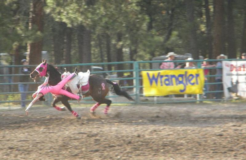 Rodeo at Three Bars Ranch