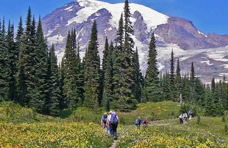 Scenic Hikes at Stone Creek Lodge